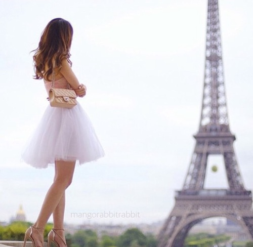 outfit-bag-tule-paris-favim-com-4285292